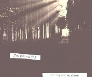 sun, quote, and forest image