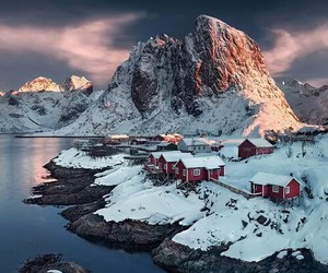 snow, nature, and norway image