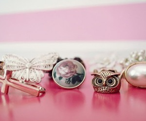 owl, rings, and fashion image
