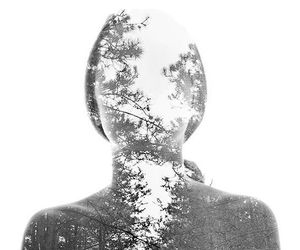 art, forest, and black and white image