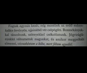 magyar, könyv, and jégviráglányok image