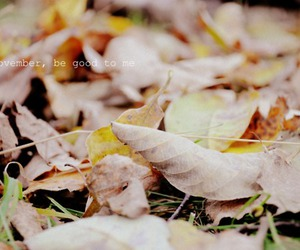 autumn, leaves, and text image