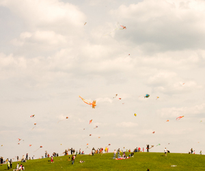 hill and kites image