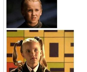 harry potter, funny, and draco malfoy image