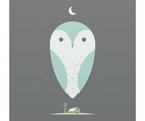 background and owl image