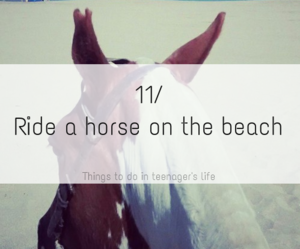 beach and horse image