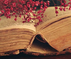 book, flowers, and old image