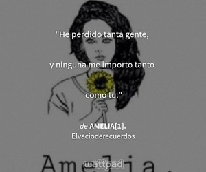 wattpad, book, and frases image