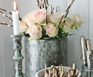 bulbs, pink roses, and candlestick image