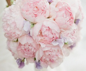 flowers, wedding, and peonies image