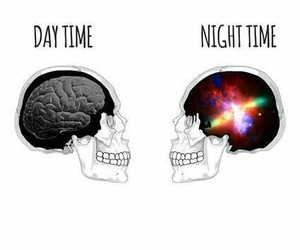 night, day, and brain image
