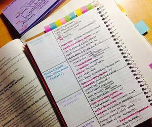study and cute image