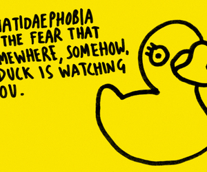 duck, fear, and phobia image