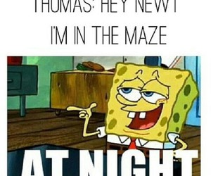 at night, funny, and spongebob image