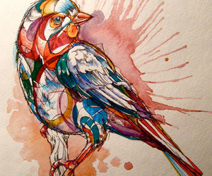 bird, art, and watercolor image