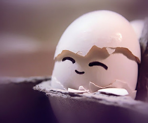 egg, cute, and smile image