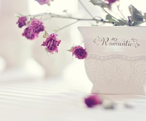 flowers, romantic, and photography image