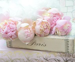 flowers, paris, and shabby chic image