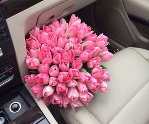 flowers, pink, and car image