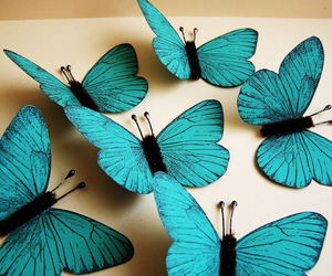 papers and butterflies turquoise image