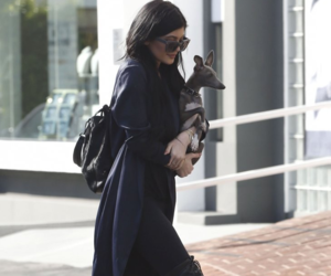 kylie jenner, dog, and style image