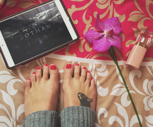 orchid, pedicure, and rose image
