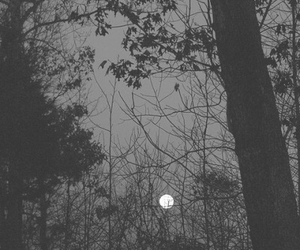 Darkness, moon, and depression image