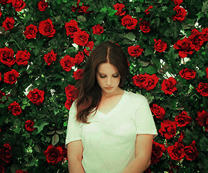 lana del rey, music, and roses image