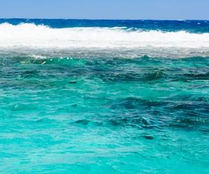 bikini, summer, and swimming image