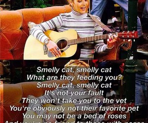 phoebe buffay, song, and smelly cat image