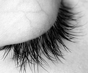 eye, veins, and eyelashes image
