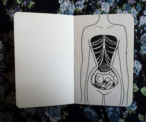 anatomy, blue, and drawing image