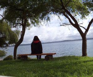 girl, green, and lake image