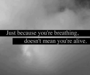 quote, alive, and life image