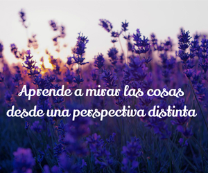 fields, flowers, and frase image