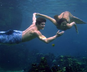beautiful, merman, and ocean image