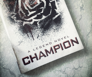 books, day, and champion image