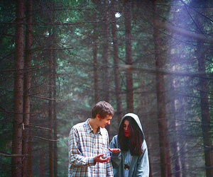 couple, forest, and photography image