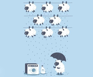 rain, sheep, and umbrella image