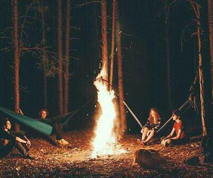 friends, fire, and forest image