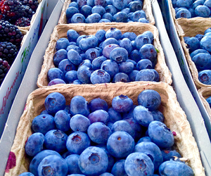 healthy, alone, and blueberries image