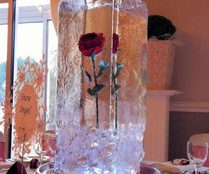 rose, flowers, and ice image