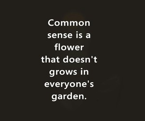 common sense, flowers, and garden image