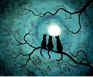 cat, moon, and turquoise image