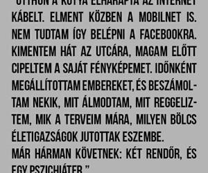 magyar, funny, and haha image