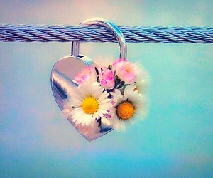 flowers, love, and beautiful image