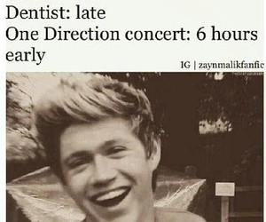 one direction, niall horan, and concert image
