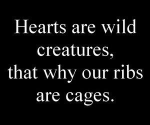 cages, heart, and quote image