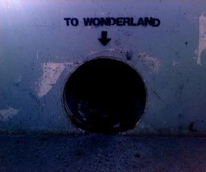 grunge, pale, and wonderland image