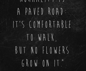 quotes, flowers, and normality image